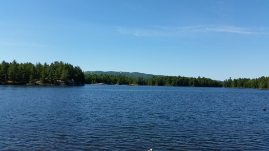 2- View from portage
