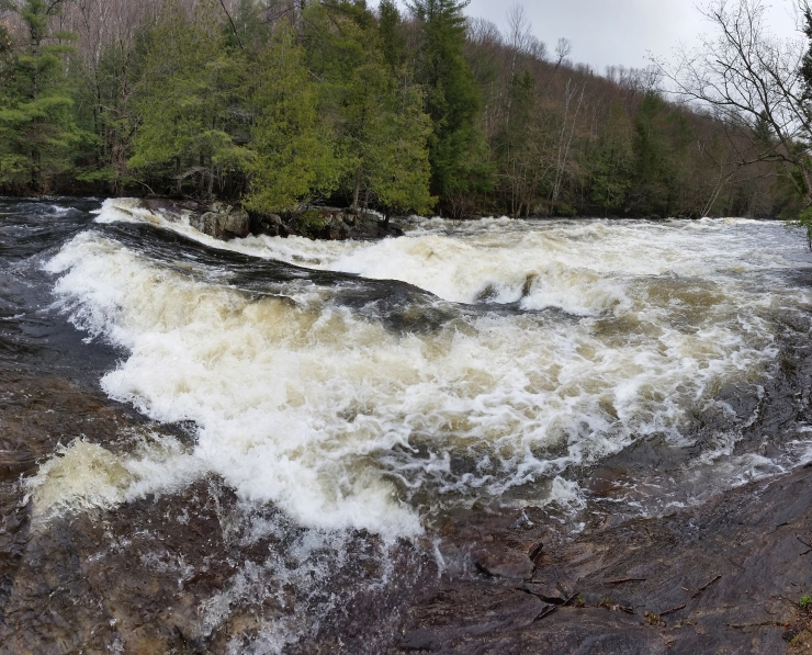 Rapids Section 1 Pano