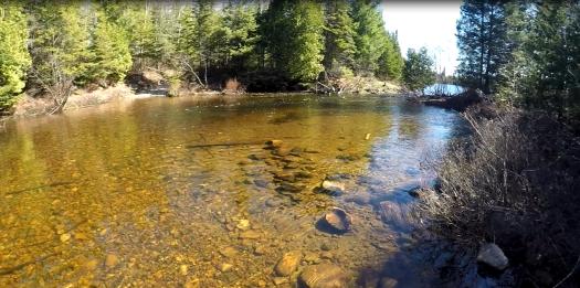 Creek crossing.png